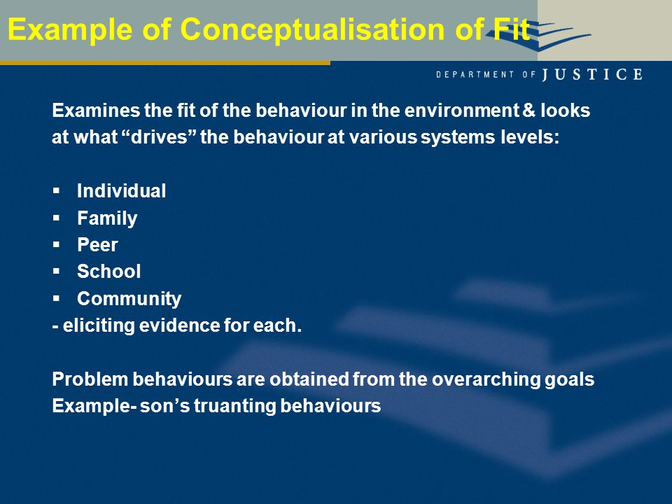 Example of Conceptualisation of Fit Examines the fit of the behaviour in the environment & looks at what drives the behaviour at various systems levels:  Individual  Family  Peer  School  Community - eliciting evidence for each.