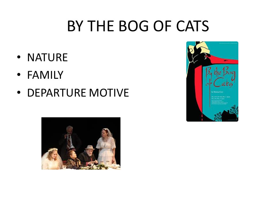 BY THE BOG OF CATS NATURE FAMILY DEPARTURE MOTIVE