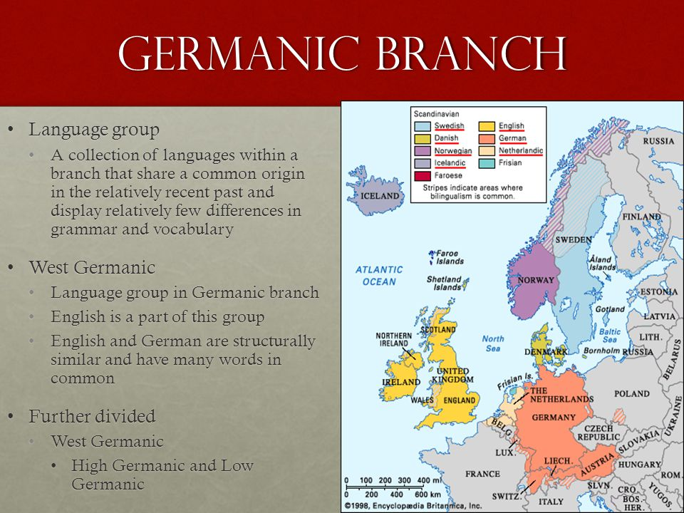 Germanic Branch Language groupLanguage group A collection of languages within a branch that share a common origin in the relatively recent past and display relatively few differences in grammar and vocabularyA collection of languages within a branch that share a common origin in the relatively recent past and display relatively few differences in grammar and vocabulary West GermanicWest Germanic Language group in Germanic branchLanguage group in Germanic branch English is a part of this groupEnglish is a part of this group English and German are structurally similar and have many words in commonEnglish and German are structurally similar and have many words in common Further dividedFurther divided West GermanicWest Germanic High Germanic and Low GermanicHigh Germanic and Low Germanic