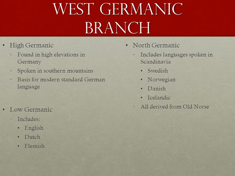 West Germanic Branch High GermanicHigh Germanic Found in high elevations in GermanyFound in high elevations in Germany Spoken in southern mountainsSpoken in southern mountains Basis for modern standard German languageBasis for modern standard German language Low GermanicLow Germanic Includes:Includes: EnglishEnglish DutchDutch FlemishFlemish North GermanicNorth Germanic Includes languages spoken in Scandinavia Swedish Norwegian Danish Icelandic All derived from Old Norse