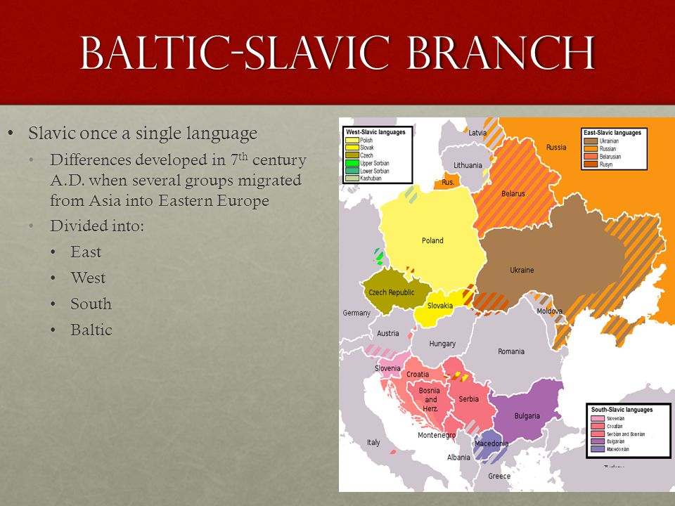 Baltic-Slavic Branch Slavic once a single languageSlavic once a single language Differences developed in 7 th century A.D.