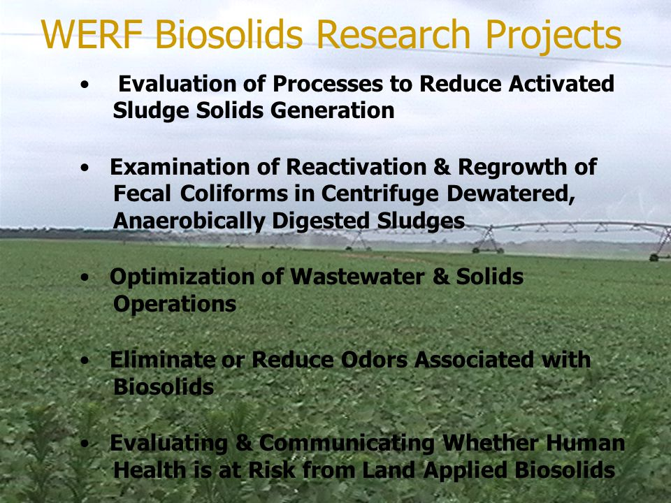 Evaluation of Processes to Reduce Activated Sludge Solids Generation Examination of Reactivation & Regrowth of Fecal Coliforms in Centrifuge Dewatered, Anaerobically Digested Sludges Optimization of Wastewater & Solids Operations Eliminate or Reduce Odors Associated with Biosolids Evaluating & Communicating Whether Human Health is at Risk from Land Applied Biosolids WERF Biosolids Research Projects