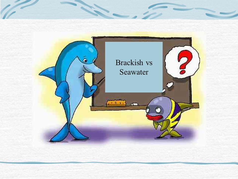 Brackish vs Seawater