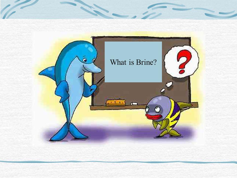 What is Brine?