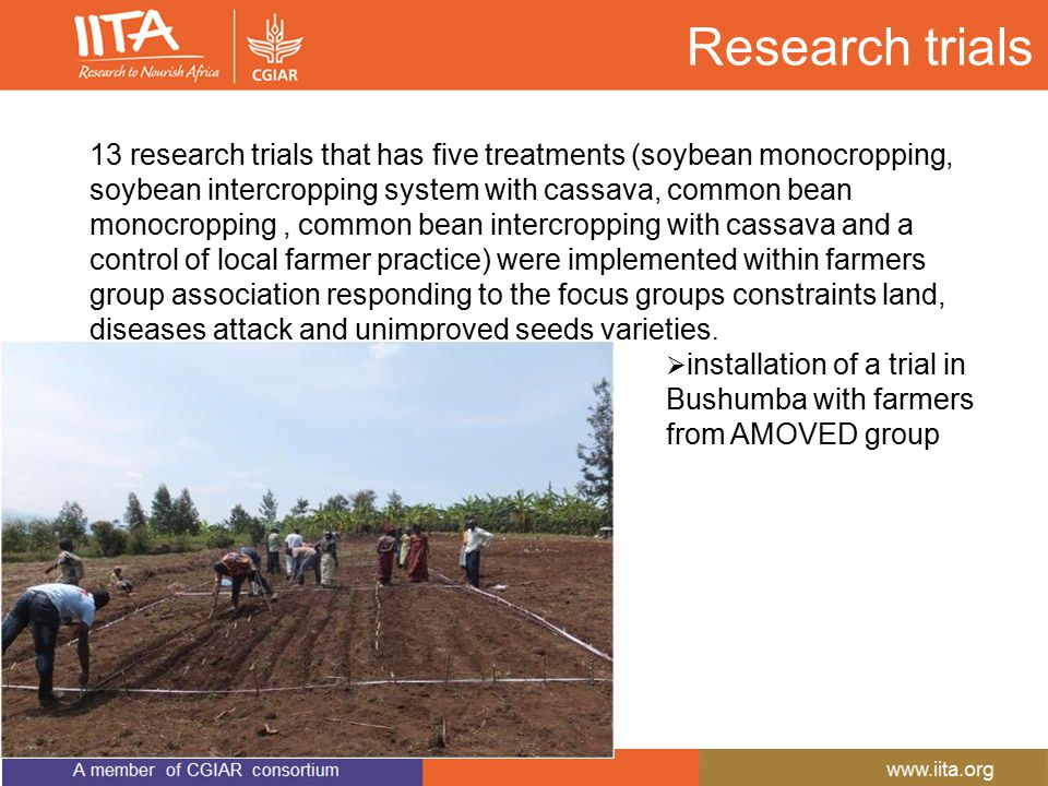 Research trials 13 research trials that has five treatments (soybean monocropping, soybean intercropping system with cassava, common bean monocropping