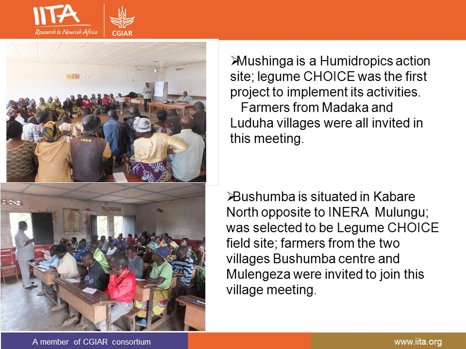  Mushinga is a Humidropics action site; legume CHOICE was the first project to implement its activities. Farmers from Madaka and Luduha villages were