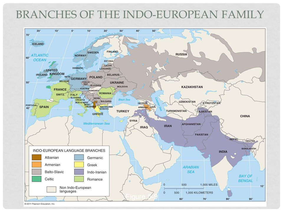 BRANCHES OF THE INDO-EUROPEAN FAMILY Figure 5-9