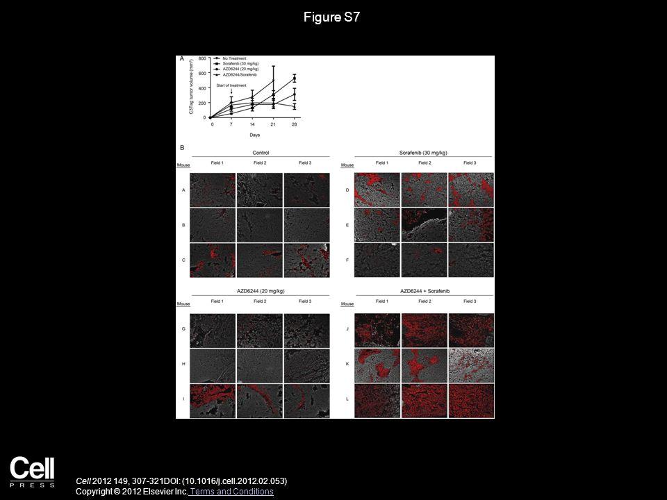 Figure S7 Cell 2012 149, 307-321DOI: (10.1016/j.cell.2012.02.053) Copyright © 2012 Elsevier Inc. Terms and Conditions Terms and Conditions