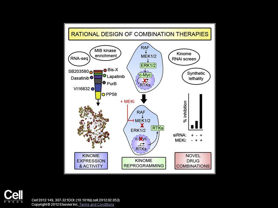 Cell 2012 149, 307-321DOI: (10.1016/j.cell.2012.02.053) Copyright © 2012 Elsevier Inc.