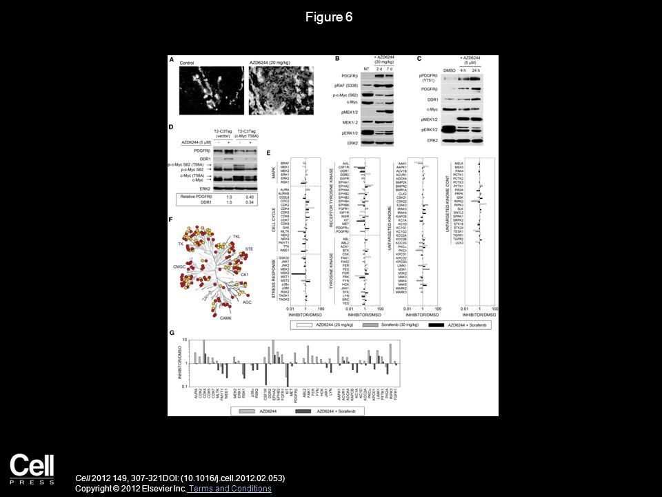 Figure 6 Cell 2012 149, 307-321DOI: (10.1016/j.cell.2012.02.053) Copyright © 2012 Elsevier Inc. Terms and Conditions Terms and Conditions