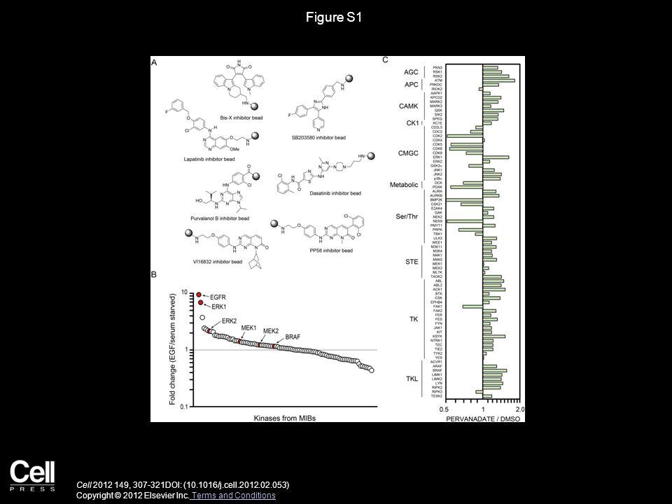 Figure S1 Cell 2012 149, 307-321DOI: (10.1016/j.cell.2012.02.053) Copyright © 2012 Elsevier Inc.