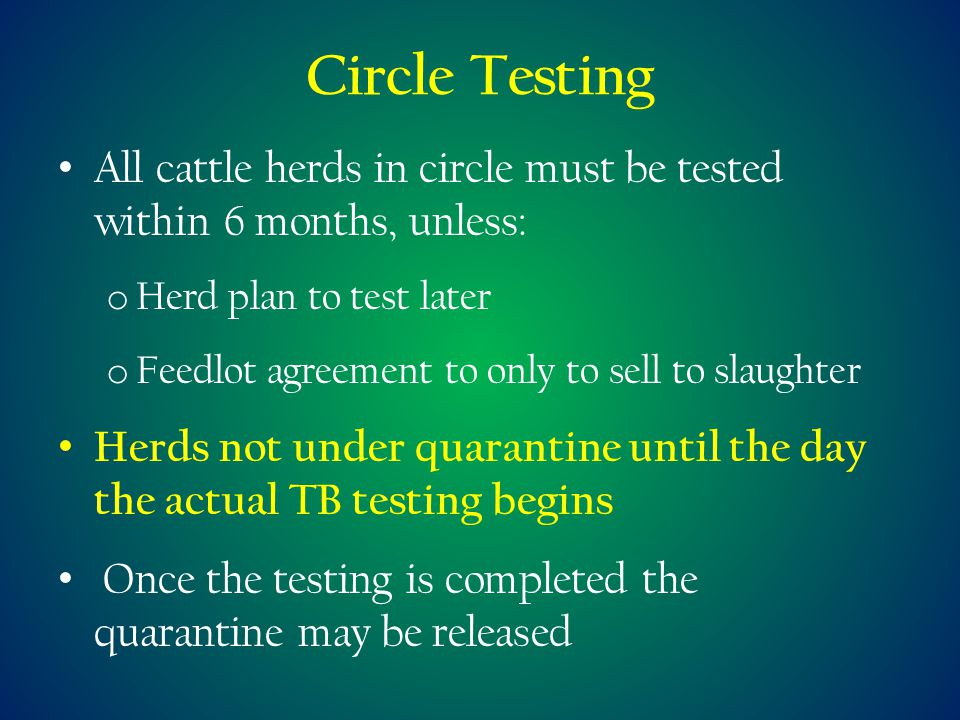Circle Testing All cattle herds in circle must be tested within 6 months, unless: o Herd plan to test later o Feedlot agreement to only to sell to slaughter Herds not under quarantine until the day the actual TB testing begins Once the testing is completed the quarantine may be released
