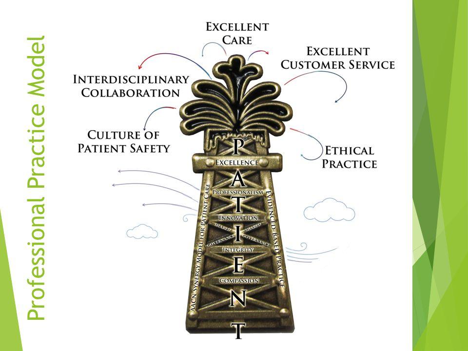 14 Professional Practice Model