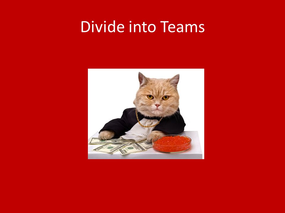 Divide into Teams