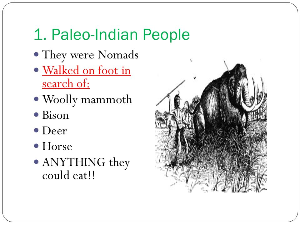 1. Paleo-Indian People They were Nomads Walked on foot in search of: Woolly mammoth Bison Deer Horse ANYTHING they could eat!!