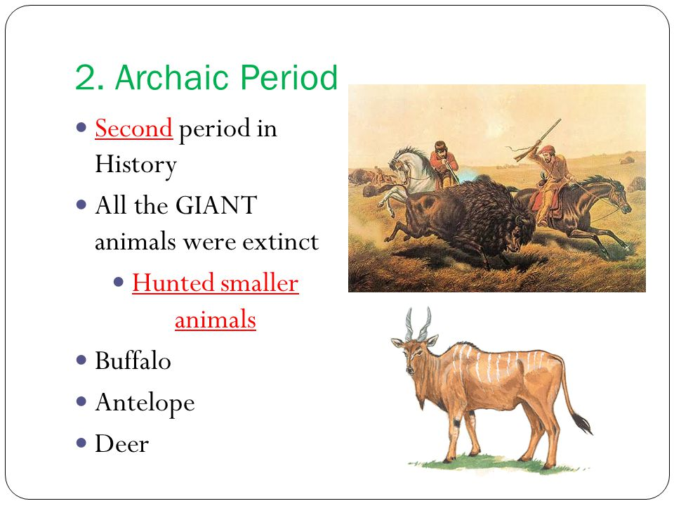 2. Archaic Period Second period in History All the GIANT animals were extinct Hunted smaller animals Buffalo Antelope Deer
