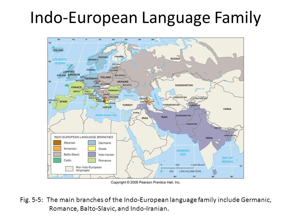 Indo-European Language Family Fig. 5-5: The main branches of the Indo-European language family include Germanic, Romance, Balto-Slavic, and Indo-Irani