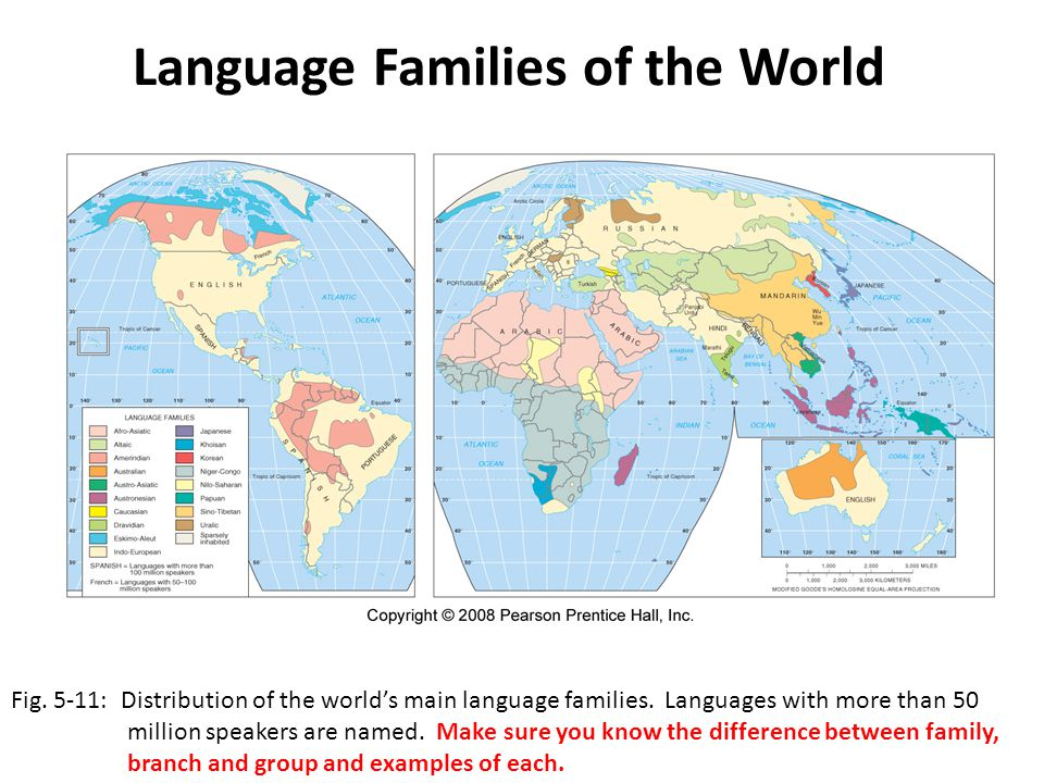 Language Families of the World Fig. 5-11: Distribution of the world's main language families. Languages with more than 50 million speakers are named.