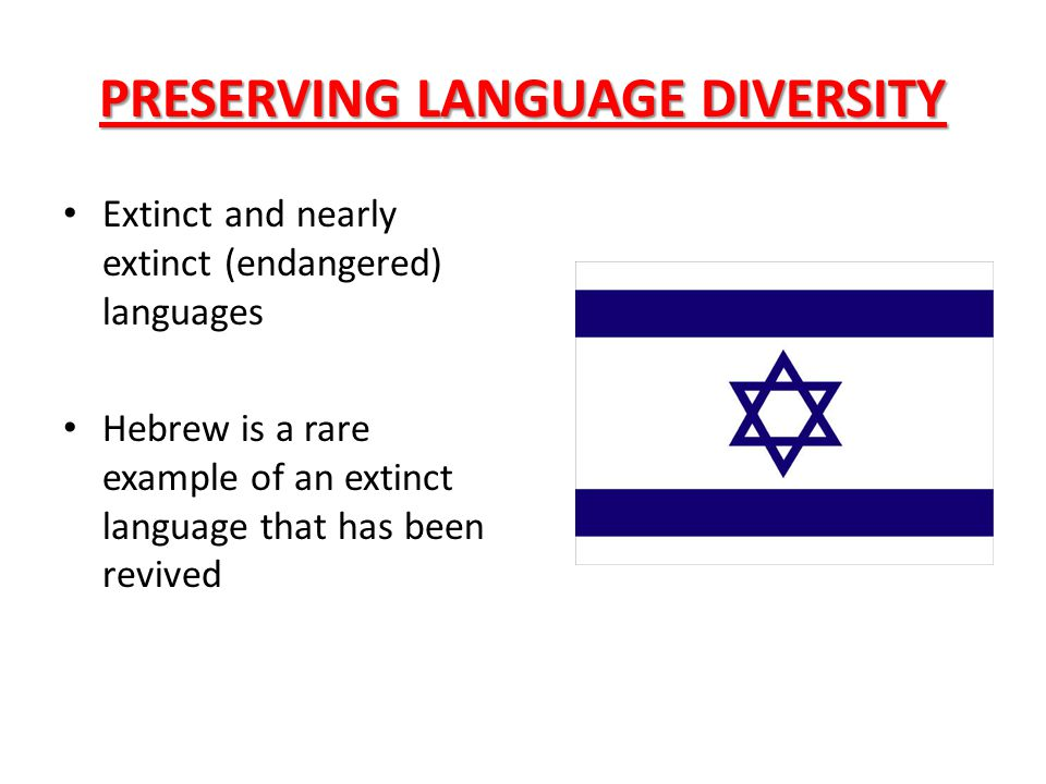 PRESERVING LANGUAGE DIVERSITY Extinct and nearly extinct (endangered) languages Hebrew is a rare example of an extinct language that has been revived
