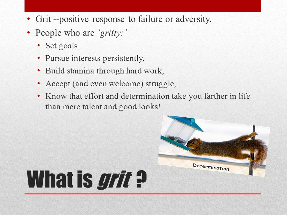 What is grit . Grit --positive response to failure or adversity.