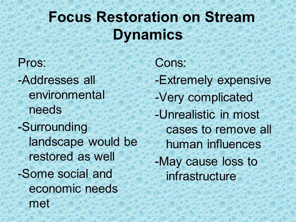 Focus Restoration on Stream Dynamics Pros: -Addresses all environmental needs -Surrounding landscape would be restored as well -Some social and economic needs met Cons: -Extremely expensive -Very complicated -Unrealistic in most cases to remove all human influences -May cause loss to infrastructure