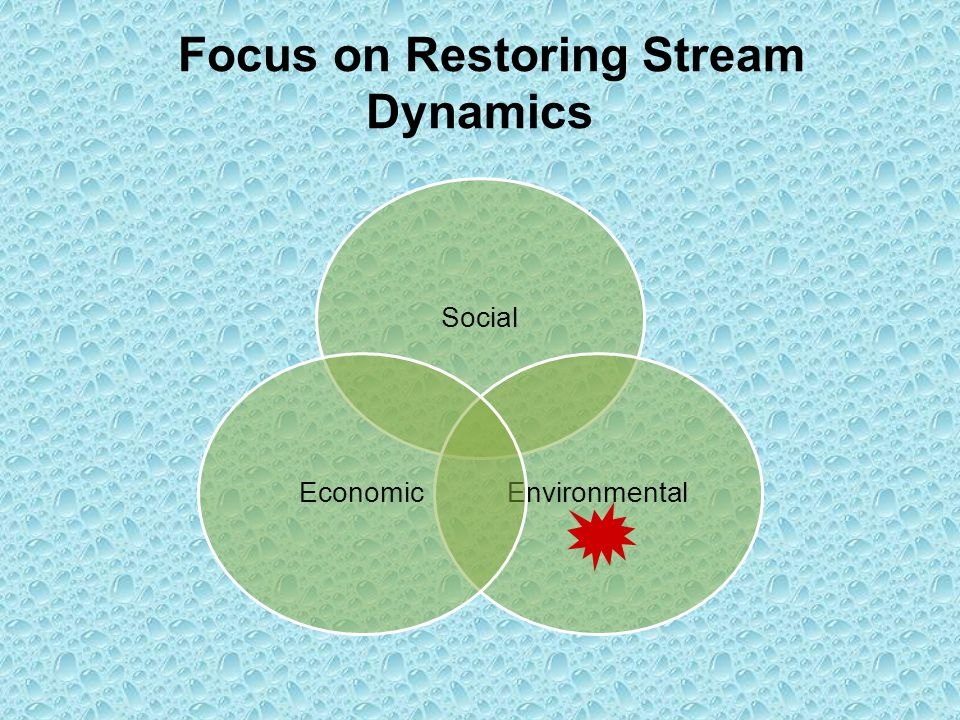 Focus on Restoring Stream Dynamics Social EnvironmentalEconomic
