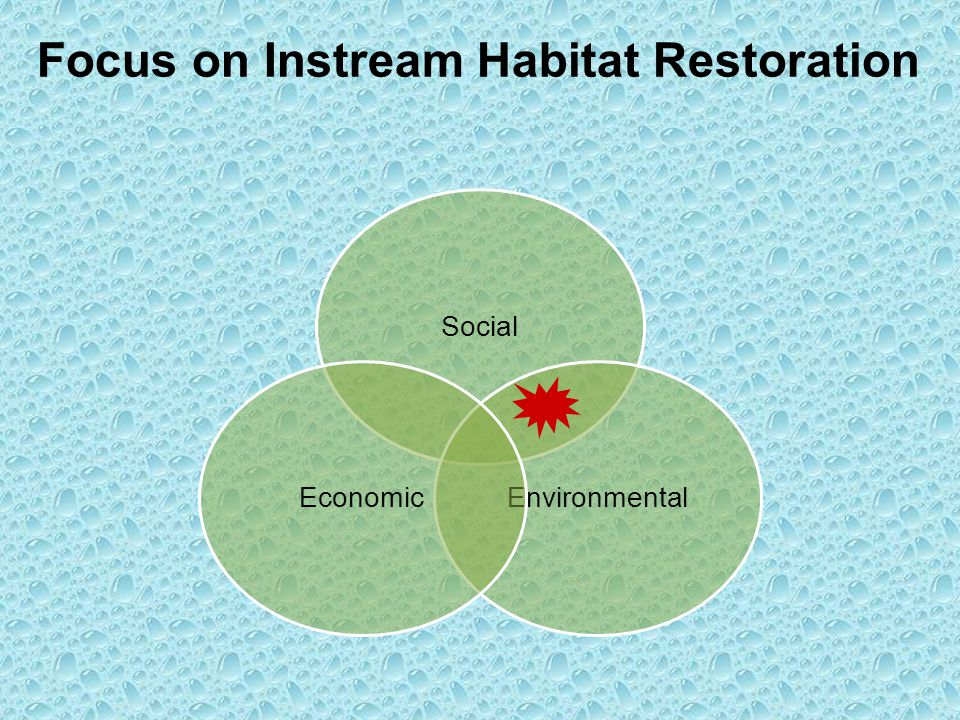 Social EnvironmentalEconomic Focus on Instream Habitat Restoration