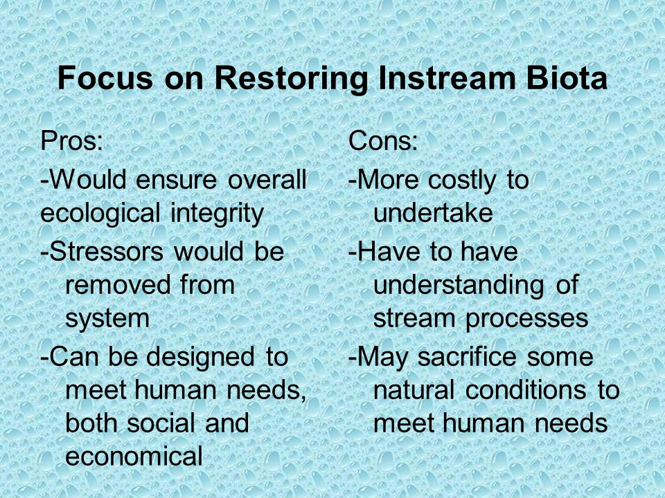 Focus on Restoring Instream Biota Pros: -Would ensure overall ecological integrity -Stressors would be removed from system -Can be designed to meet hu