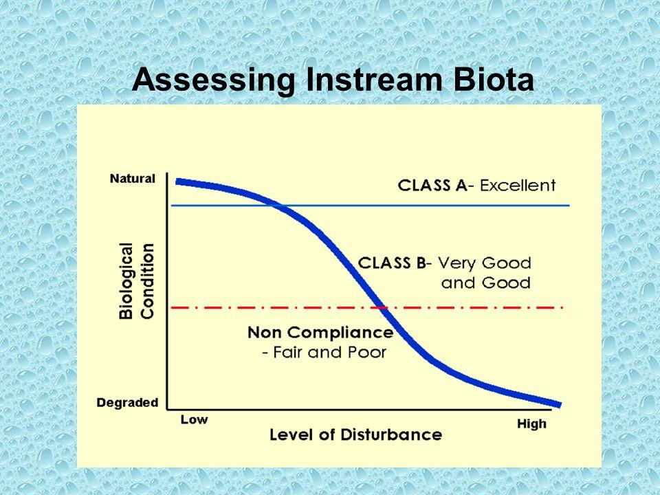 Assessing Instream Biota