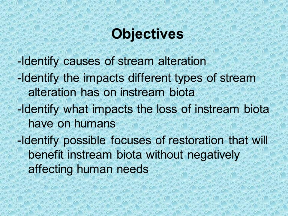 Objectives -Identify causes of stream alteration -Identify the impacts different types of stream alteration has on instream biota -Identify what impacts the loss of instream biota have on humans -Identify possible focuses of restoration that will benefit instream biota without negatively affecting human needs