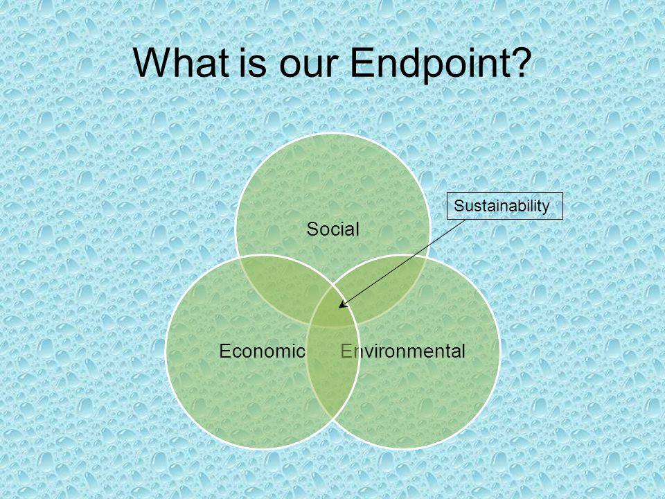 Social EnvironmentalEconomic Sustainability What is our Endpoint?