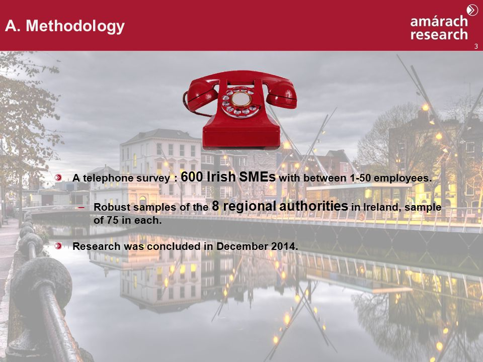 3 A telephone survey : 600 Irish SMEs with between 1-50 employees.