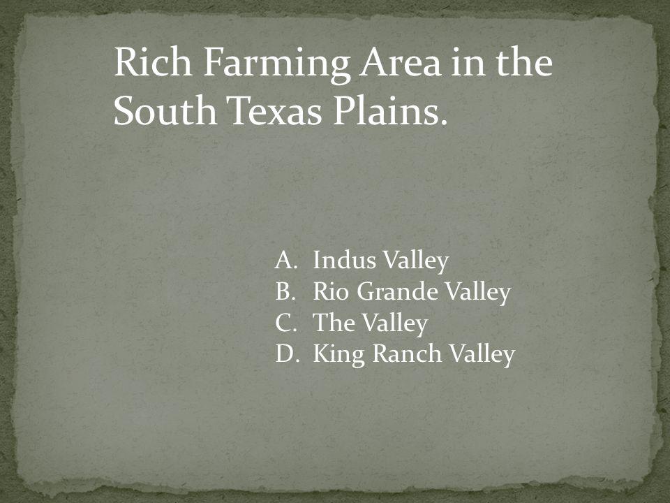 Rich Farming Area in the South Texas Plains.