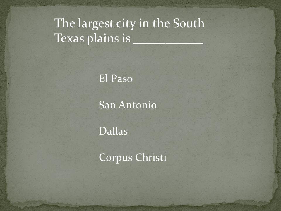 The largest city in the South Texas plains is ___________ El Paso San Antonio Dallas Corpus Christi