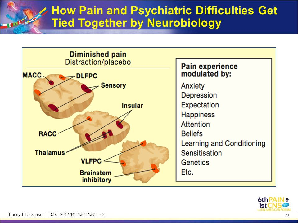 How Pain and Psychiatric Difficulties Get Tied Together by Neurobiology Tracey I, Dickenson T. Cell. 2012;148:1308-1308, e2. 25