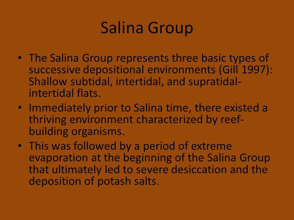 Salina Group The Salina Group represents three basic types of successive depositional environments (Gill 1997): Shallow subtidal, intertidal, and supratidal- intertidal flats.