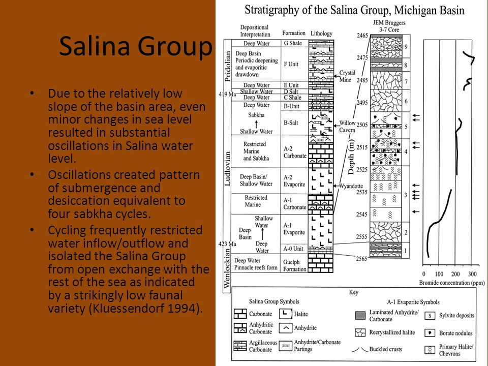 Salina Group Due to the relatively low slope of the basin area, even minor changes in sea level resulted in substantial oscillations in Salina water level.