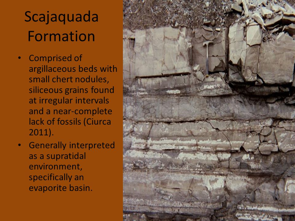 Scajaquada Formation Comprised of argillaceous beds with small chert nodules, siliceous grains found at irregular intervals and a near-complete lack of fossils (Ciurca 2011).