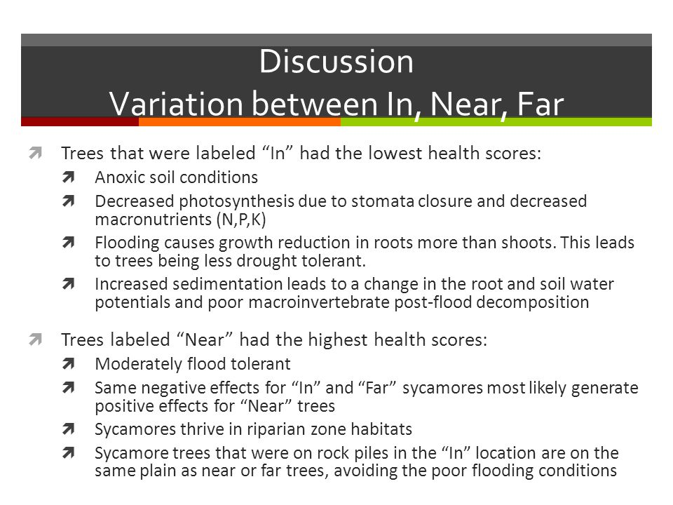 Discussion Variation between In, Near, Far  Trees that were labeled In had the lowest health scores:  Anoxic soil conditions  Decreased photosynthesis due to stomata closure and decreased macronutrients (N,P,K)  Flooding causes growth reduction in roots more than shoots.