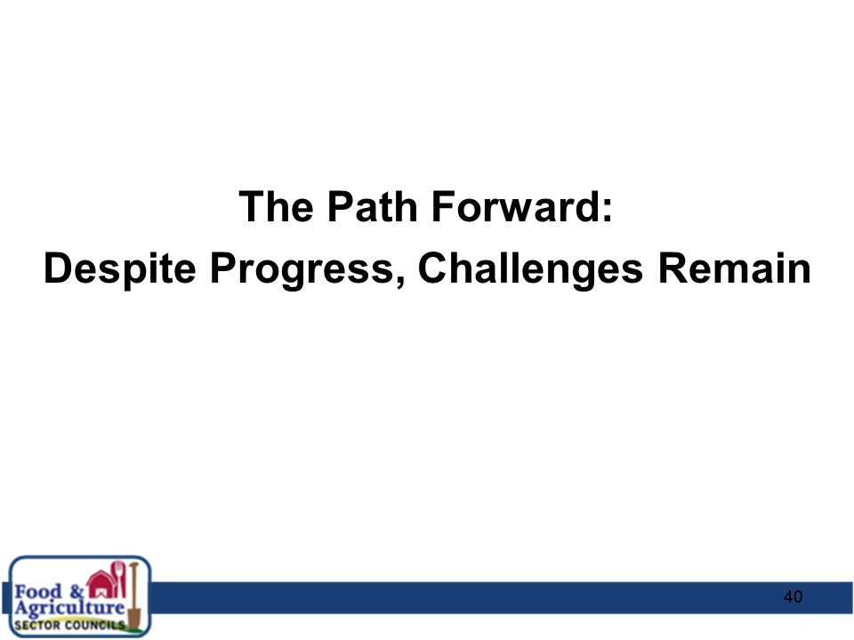 40 The Path Forward: Despite Progress, Challenges Remain