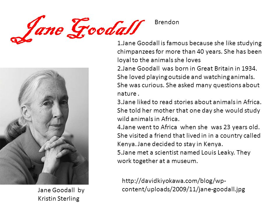 Jane Goodall Brendon Jane Goodall by Kristin Sterling 1.Jane Goodall is famous because she like studying chimpanzees for more than 40 years.