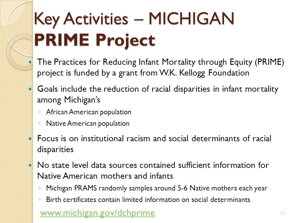 Key Activities – MICHIGAN PRIME Project The Practices for Reducing Infant Mortality through Equity (PRIME) project is funded by a grant from W.K.