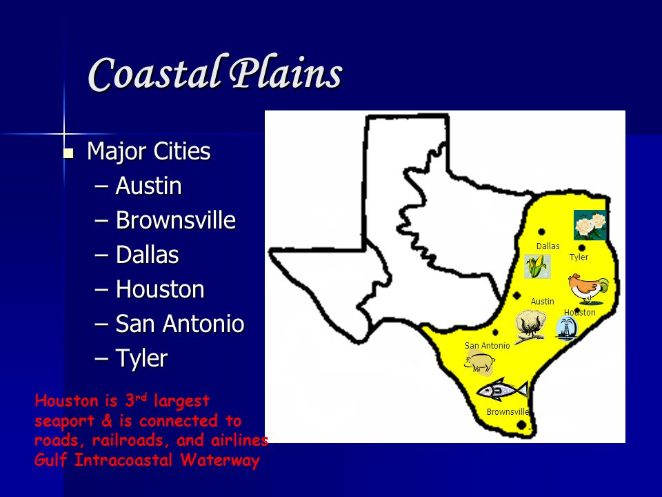 Coastal Plains Major Cities Major Cities –Austin –Brownsville –Dallas –Houston –San Antonio –Tyler Dallas Tyler Austin Houston San Antonio Brownsville Houston is 3 rd largest seaport & is connected to roads, railroads, and airlines Gulf Intracoastal Waterway