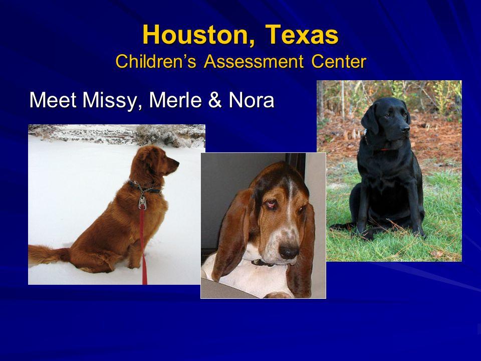 Houston, Texas Children's Assessment Center Meet Missy, Merle & Nora