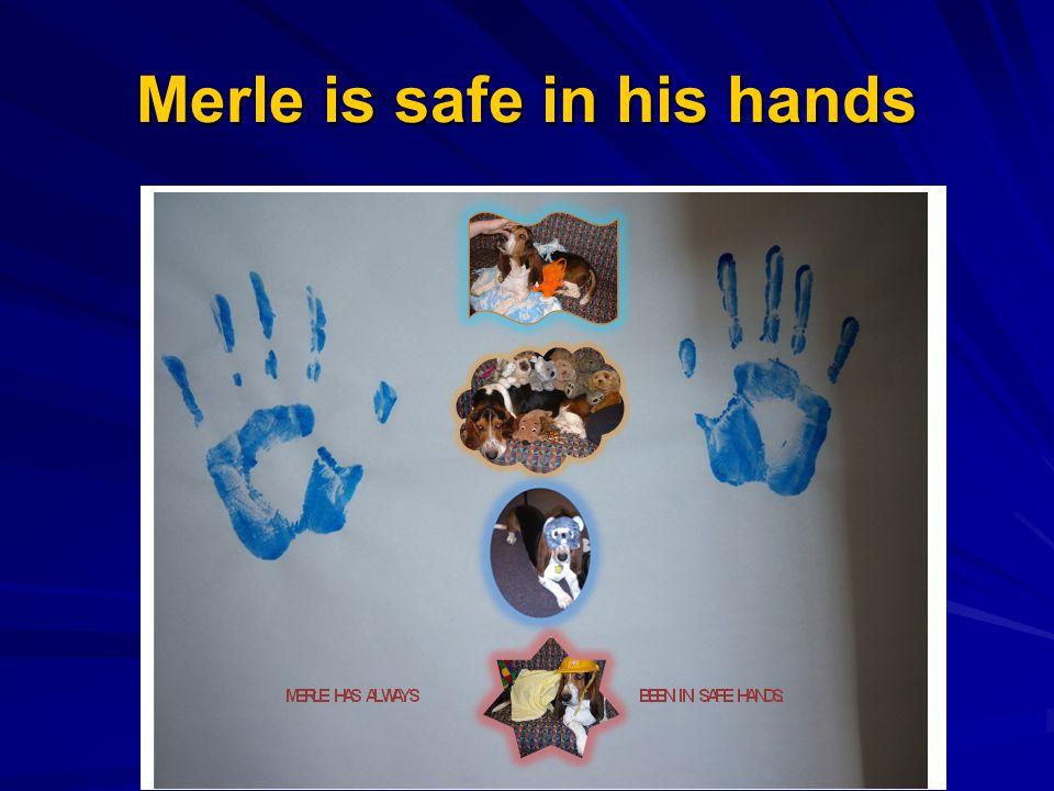 Merle is safe in his hands