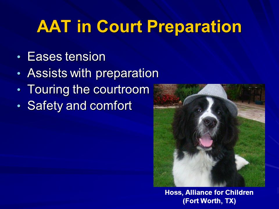 AAT in Court Preparation Eases tension Eases tension Assists with preparation Assists with preparation Touring the courtroom Touring the courtroom Saf