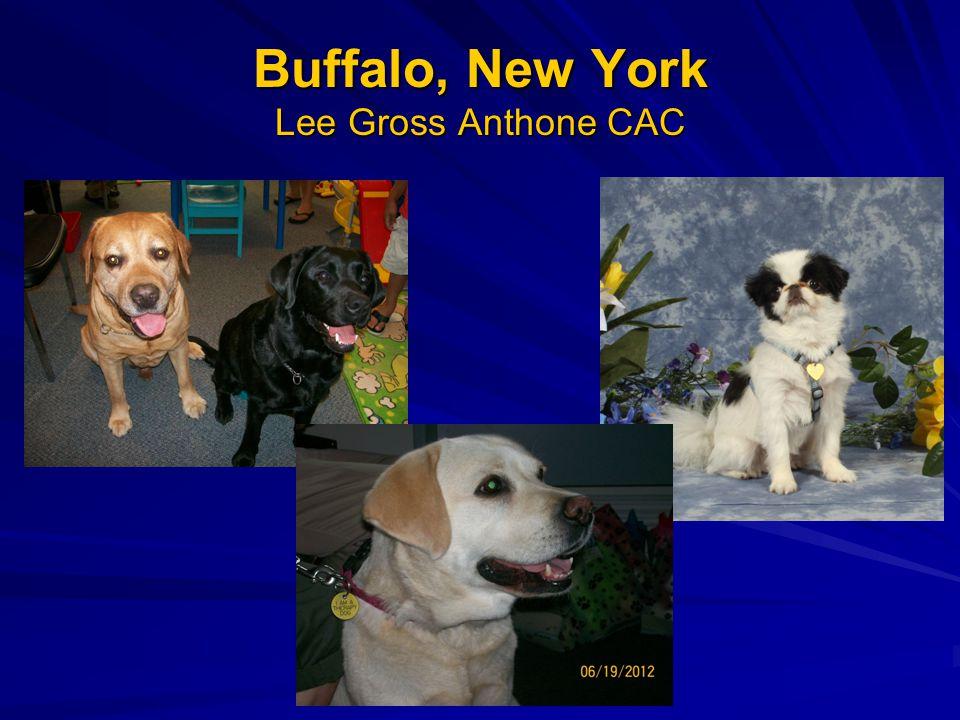 Buffalo, New York Lee Gross Anthone CAC