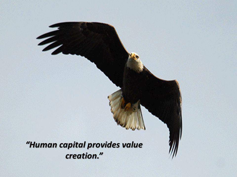 Human capital provides value creation.