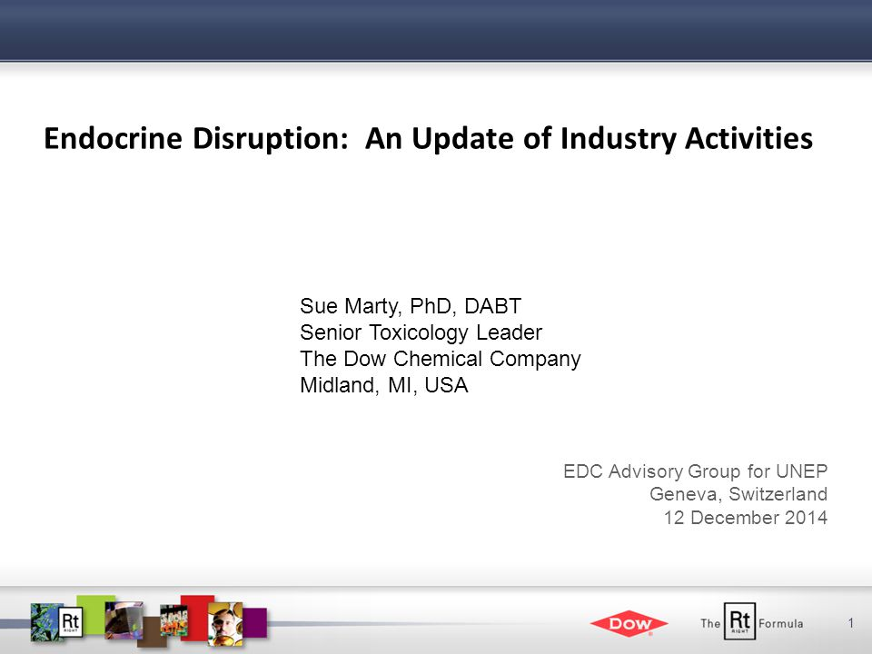 1 Endocrine Disruption: An Update of Industry Activities Sue Marty, PhD, DABT Senior Toxicology Leader The Dow Chemical Company Midland, MI, USA EDC Advisory Group for UNEP Geneva, Switzerland 12 December 2014