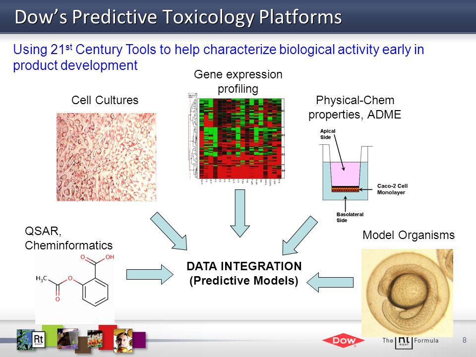 8 Dow's Predictive Toxicology Platforms DATA INTEGRATION (Predictive Models) Model Organisms Gene expression profiling Physical-Chem properties, ADME Cell Cultures QSAR, Cheminformatics Using 21 st Century Tools to help characterize biological activity early in product development
